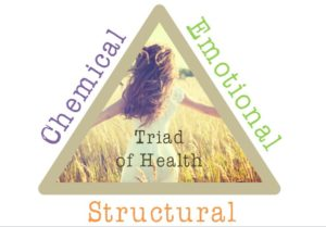 Triad of Health 2 300x209 - How to achieve Structural, Emotional and Chemical balance