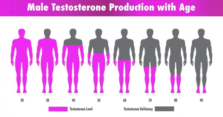 How And Why Does Testosterone Deficiency Affect Older Men 736x386 1 - How does Testosterone level affects men and how to know if it's low.
