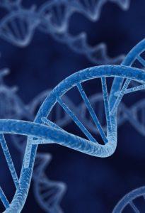 genome healing dna 1 e1611294691925 205x300 - Massage and Healing